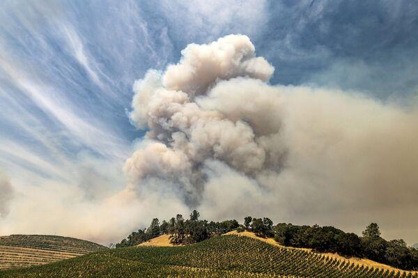 Dym z pożarów lasów w Kalifornii - Sputnik Polska