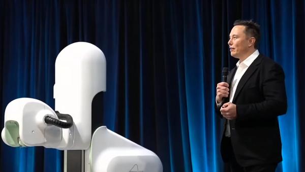 Elon Musk wszczepił świni chip pod czaszkę. - Sputnik Polska