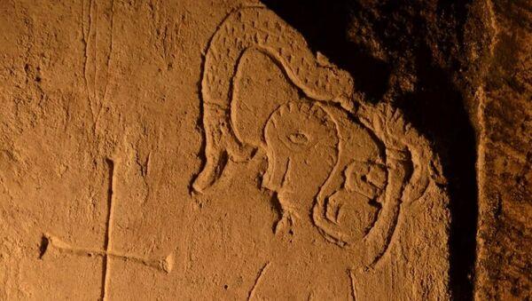 Rzadkie graffiti z cudowną bestią znalezione przez archeologów w Katedrze Spasskiej Pereslavl-Zalessky - Sputnik Polska