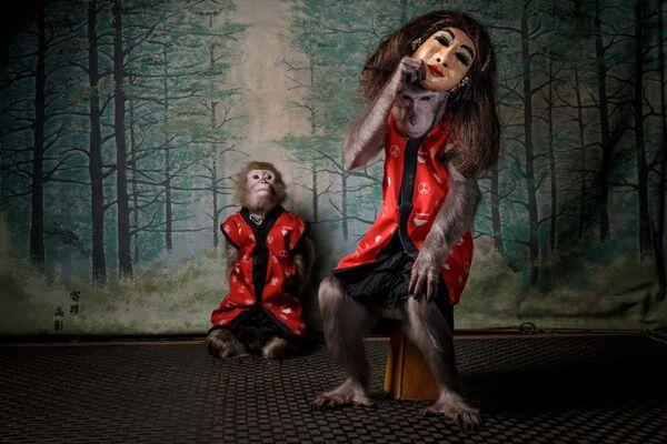 """Zdjęcie """"Des Affen Maske"""" autorstwa holenderskiego fotografa Jaspera Doesta, zwycięzcy konkursu European Wildlife Photographer of the Year 2020 - Sputnik Polska"""