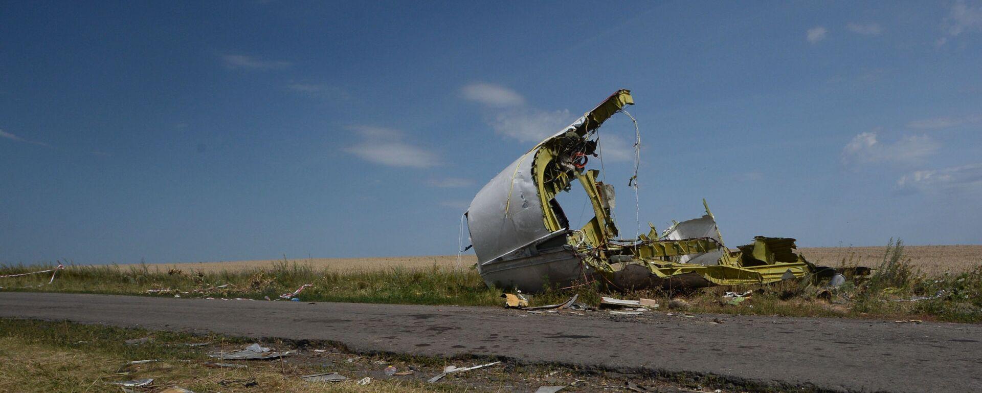 Na miejscu katastrofy malezyjskiego Boeinga 777 w obwodzie Donieckim. - Sputnik Polska, 1920, 24.07.2021
