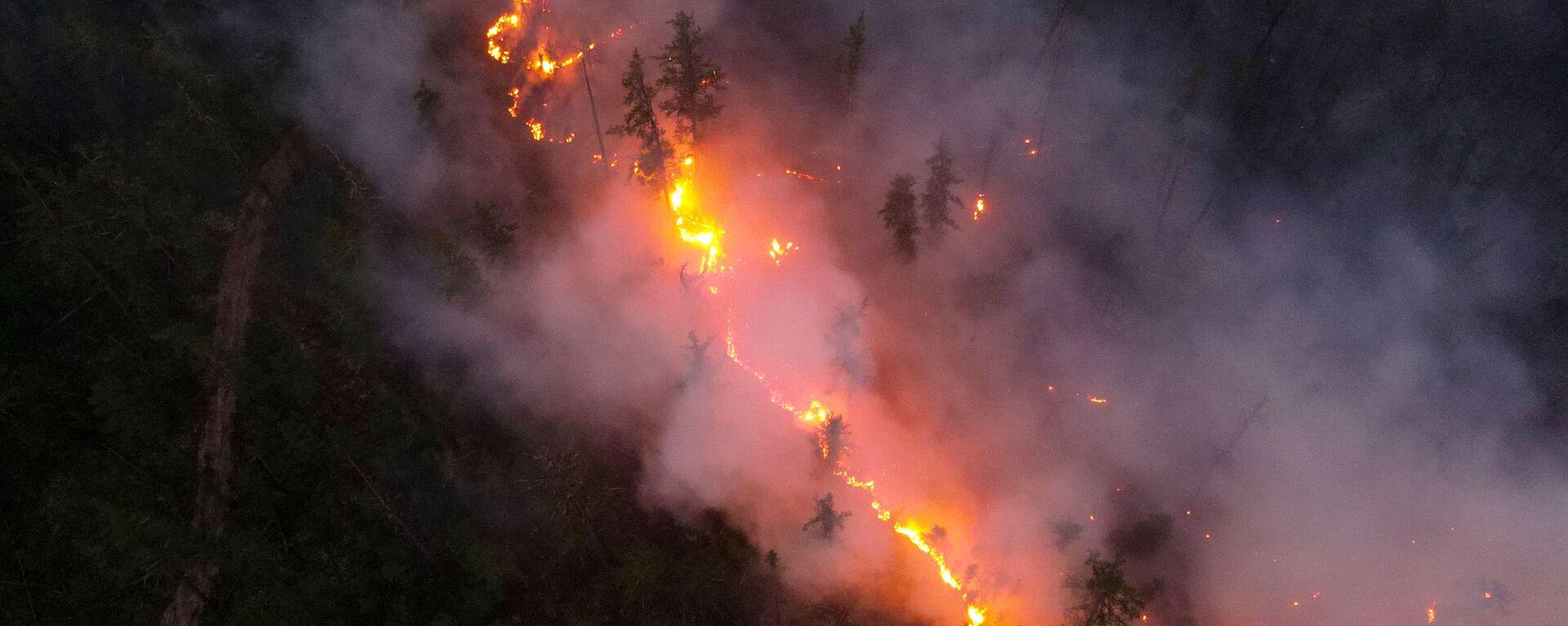 Pożary lasów w Jakucji - Sputnik Polska, 1920, 27.07.2021