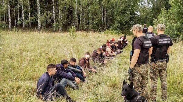 Польские пограничники задерживают людей, пытающихся пересечь границу между Беларусью и Польшей - Sputnik Polska