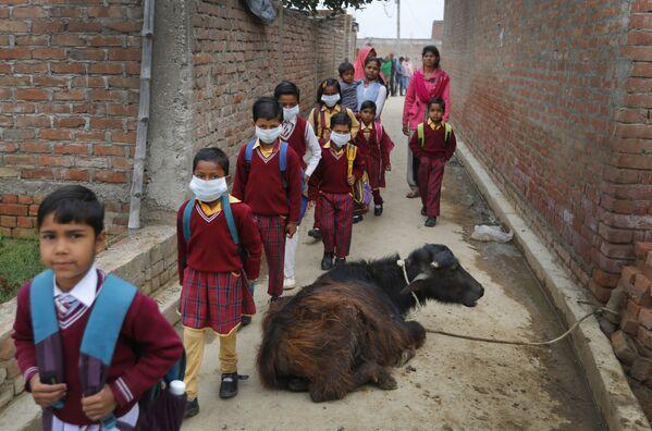 Dzieci noszące maski na twarzach w obliczu obaw związanych z rozprzestrzenianiem się koronawirusa, wracają do domu po tym, jak wiedzą, że publiczne zgromadzenia i szkoły są zamykane na skutek wydanego późno w nocy nakazu rządu stanowego, w wiosce w Kannauj, w najbardziej zaludnionym stanie Uttar Pradesh w Indiach, sobota, 14 marca , 2020 - Sputnik Polska