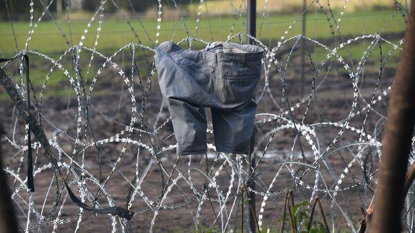 Колючий забор на белорусско-польской границе - Sputnik Polska
