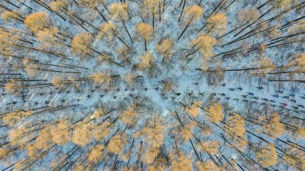 Zdjęcie chińskiego fotografa Chang Xu, zwycięzcy w kategorii Moja na konkursie fotograficznym im. Stenina - Sputnik Polska