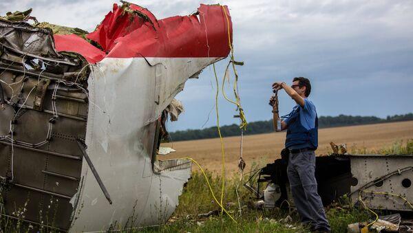 Prace poszukiwawcze na miejscu katastrofy malezyjskiego Boeinga 777 w rejonie Szachtarśka - Sputnik Polska