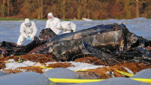 Katastrofa samolotu rosyjskich linii lotniczych S7 w Niemczech - Sputnik Polska