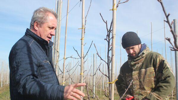 Iwan Filippenko z synem Romanem w sadzie jabłoniowym - Sputnik Polska