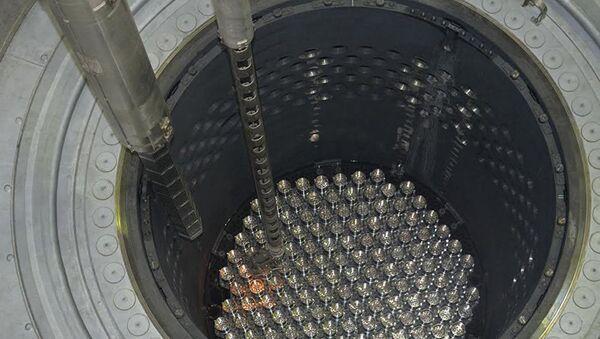 Ładowanie paliwa jądrowego do reaktora - Sputnik Polska