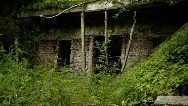 Ruiny kwatery głównej Adolfa Hitlera, tak zwanego Wilczego Szańca w Kętrzynie - Sputnik Polska