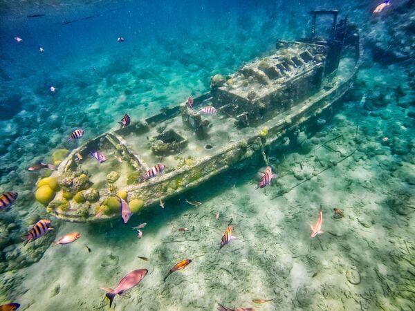 Zatopiony holownik niedaleko wyspy Curaçao na Morzu Karaibskim - Sputnik Polska