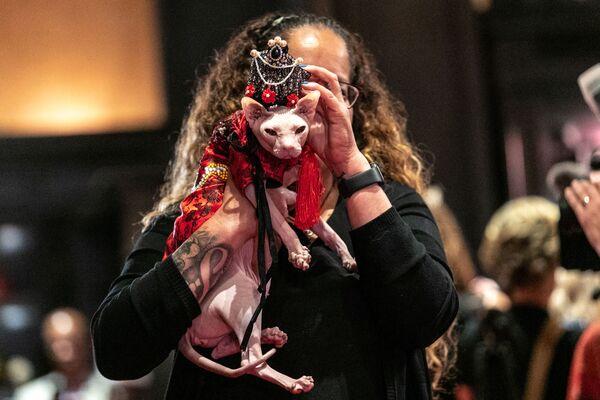 Kot Wasabi przed rozpoczęciem pokazu mody Algonquin Hotel's Annual Cat Fashion Show w Nowym Jorku - Sputnik Polska