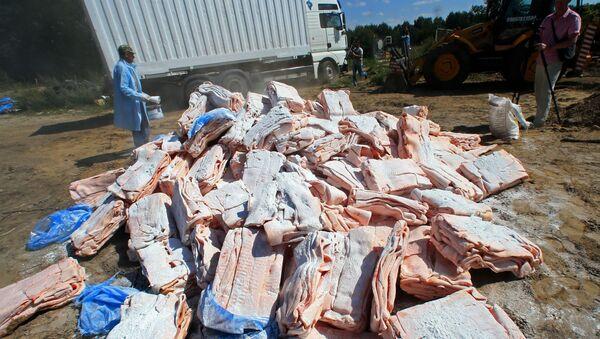 Zniszczenie sankcjonowanych produktów przejętych na rosyjsko-polskiej granicy ,Kaliningrad. Zdjęcie archiwalne - Sputnik Polska