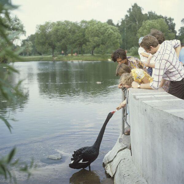 Dzieci w ogrodzie botanicznym, 1979 rok  - Sputnik Polska