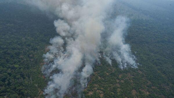 Pożary w brazylijskiej Amazonii - Sputnik Polska