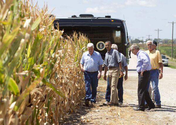 Barack Obama w polu kukurydzy - Sputnik Polska