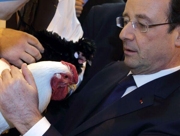 Prezydent Francji François Hollande podczas rolniczych w Paryżu - Sputnik Polska