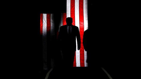 Prezydent USA Donald Trump na tle amerykańskiej flagi - Sputnik Polska
