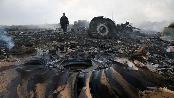 Katastrofa MH17 nad Donbasem - Sputnik Polska