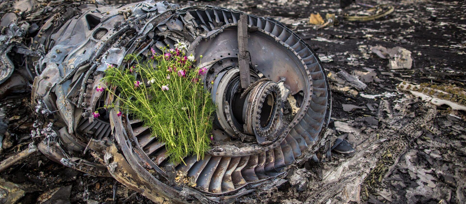 Kwiaty na szczątkach MH17 - Sputnik Polska, 1920, 16.10.2020