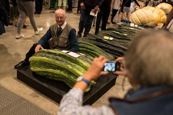 Peter Glazbrook z cukinią o wadze 65,3 kg, zdobył nagrodę w konkursie warzywnym Autumn Flower Show w 2019 roku - Sputnik Polska