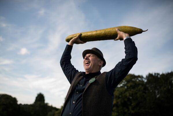 Ogrodnik Graham Barratt trzyma 92 cm ogórka podczas konkursu warzywnego w Wielkiej Brytanii, 2019 rok  - Sputnik Polska