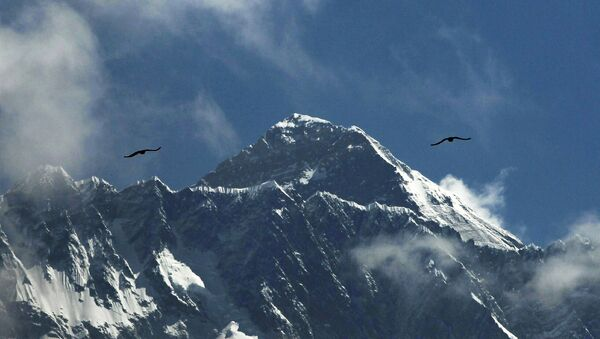 Ptaki nad Everestem - Sputnik Polska
