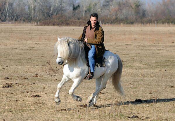 Prezydent Francji Nicolas Sarkozy jeździ na ranczo Mas du Juge w południowej Francji - Sputnik Polska