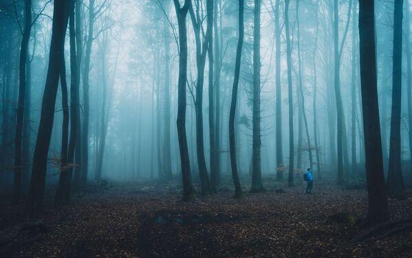 To tajemnicze zdjęcie wykonał fotograf z Niemiec - Alexander Schitschka w ramach konkursu fotograficznego World's Best Photos of #Blue2019 - Sputnik Polska