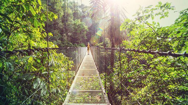 Spacer po dżungli na Kostaryce  - Sputnik Polska