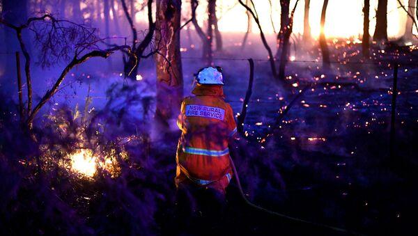 Pożary lasów w Australii - Sputnik Polska