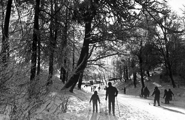 Spacer na nartach - Sputnik Polska