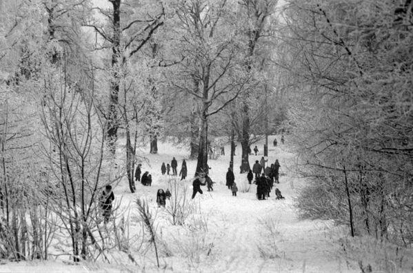 Spacer w parku. Moskwa - Sputnik Polska