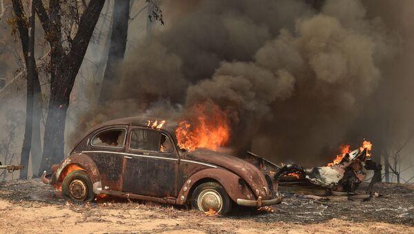 Pożary w Australii - Sputnik Polska