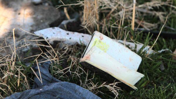 Katastrofa ukraińskiego samolotu pasażerskiego Boeing 737 w Iranie. - Sputnik Polska