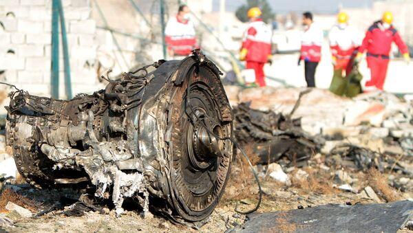 Katastrofa ukraińskiego samolotu w Iranie - Sputnik Polska