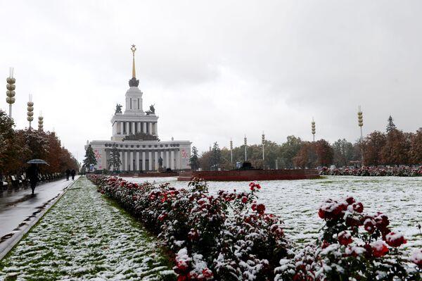 Pawilion Centralnyj w Ogólnorosyjskim Centrum Wystawowym w Moskwie - Sputnik Polska