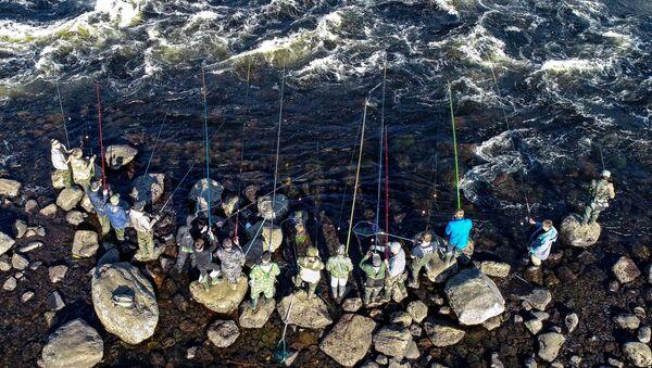 Rybacy łowią ryby w rzece Umba w obwodzie murmańskim - Sputnik Polska