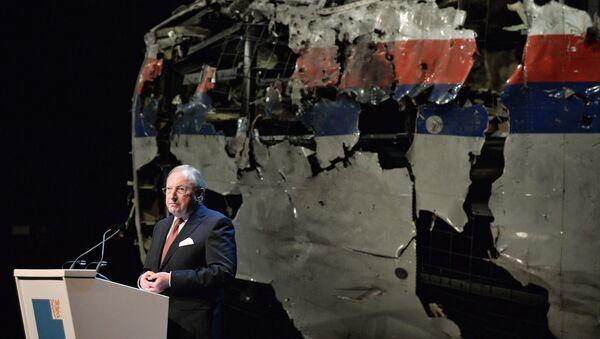 Tjibbe Herman Jan Joustra przedstawia raport o katastrofie MH17 na Ukrainie - Sputnik Polska