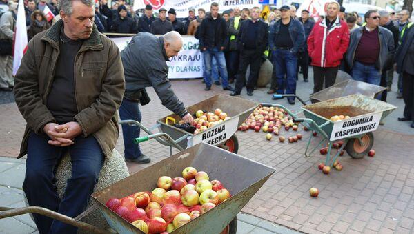 Protest polskich rolników przeciwko sankcjom wobec Rosji - Sputnik Polska