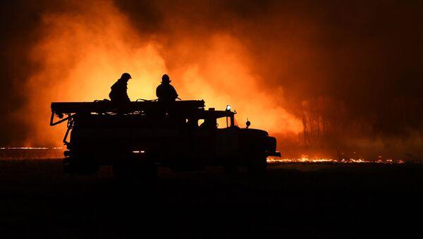 Strażacy gaszą pożar w obwodzie nowosybirskim - Sputnik Polska