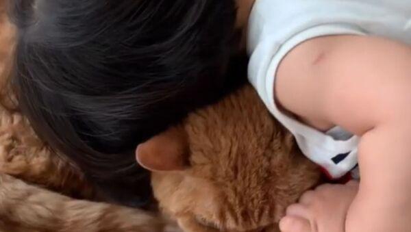 Dziecko i jego ukochany kot - Sputnik Polska