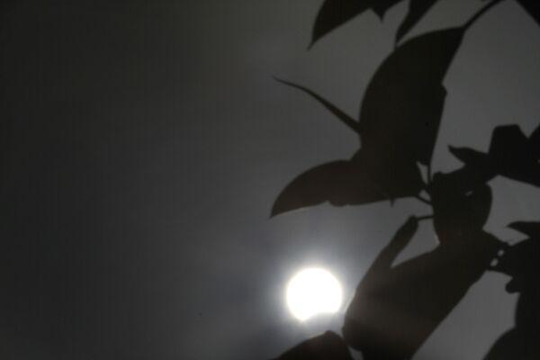 Сzęściowe zaćmienie Słońca na Cyprze - Sputnik Polska