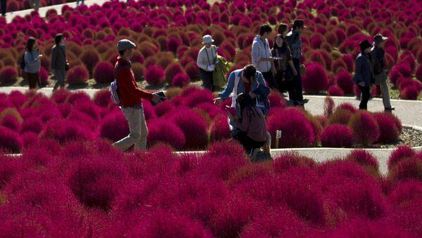 Turyści w parku Hitachi w Tokio - Sputnik Polska