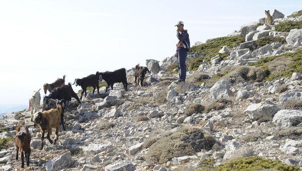 Pasterz na górze w pobliżu Slenfe - Sputnik Polska