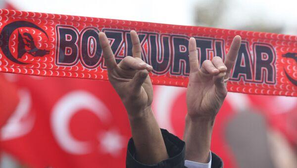 Zwolennicy tureckiej młodzieżowej organizacji ultraprawicowych nacjonalistów Bozkurt (Szare Wilki) z charakterystycznym gestem - Sputnik Polska