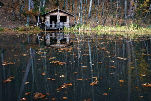Leśne jezioro przy drodze prowadzącej na Aj-Petri w okolicach Jałty. - Sputnik Polska
