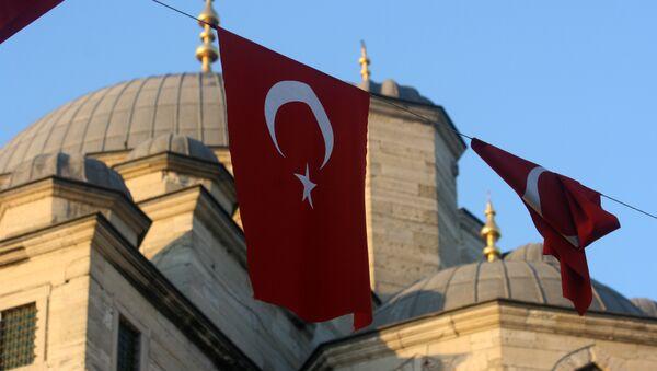 Tureckie flagi - Sputnik Polska