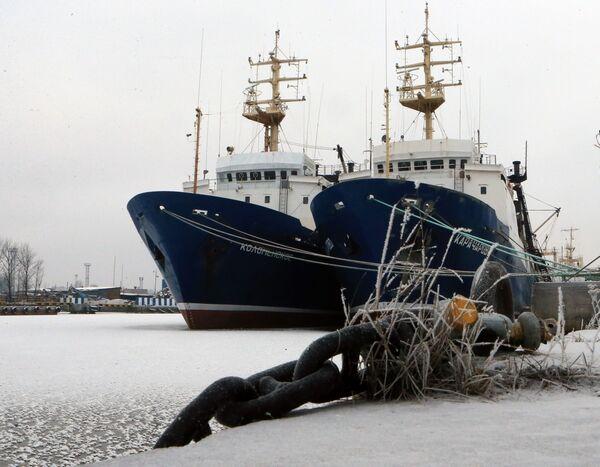 Statki w porcie Kaliningradu - Sputnik Polska
